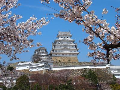 青春18きっぷの旅 2019年春 平成最後の桜を求めて [2] ~兵庫、姫路城の桜~