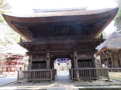 益子の「道の駅ましこ」と「坂東札所・西明寺」に行きました