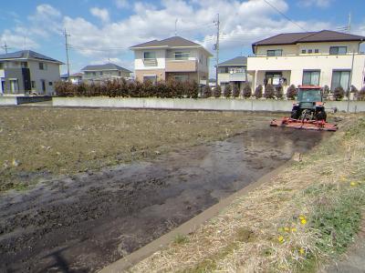2019年桜を求めて本州上陸 上陸して今日で7日目 果たして桜は何処で咲いてるの~