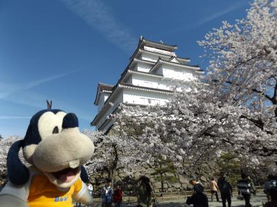 グーちゃん、会津へ平成最後の花見に行く!(鶴ヶ城の桜とほまれ酒造は世界一!?編)