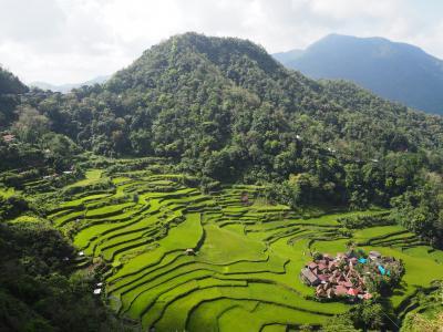 4連休でフィリピン一人旅2*・゜・*世界遺産のライステラスが見たくてバナウェへ*・゜・*