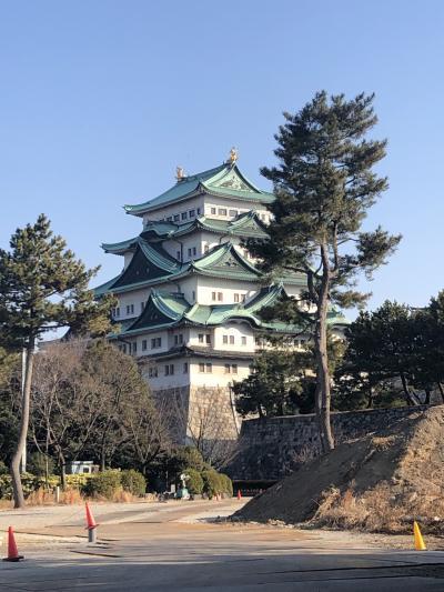 とある目的と、初名古屋城とひつまぶし&味噌カツ