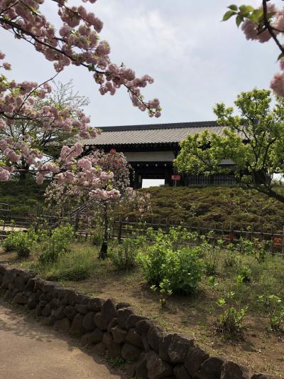 東京に都市農業公園!