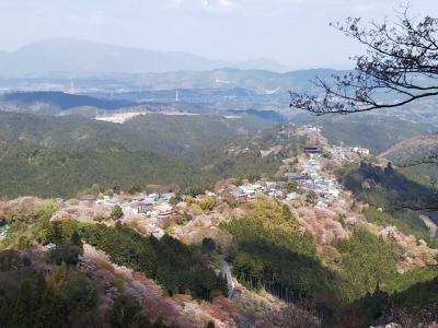 2019春の吉野山ひとり歩き