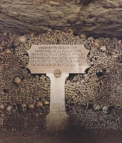 パリ 骸骨の地下トンネル&登坂広臣おすすめのタイ料理