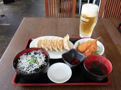 【2019国内】葉山女子旅きっぷでプチ旅行 & おまけの空撮