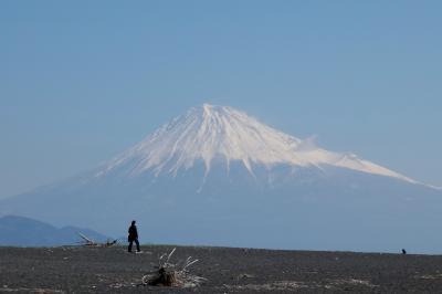 清水 羽衣の松と日本平