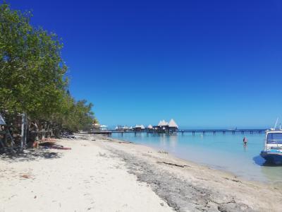 ニューカレドニアへ家族旅行③ メトル島へ