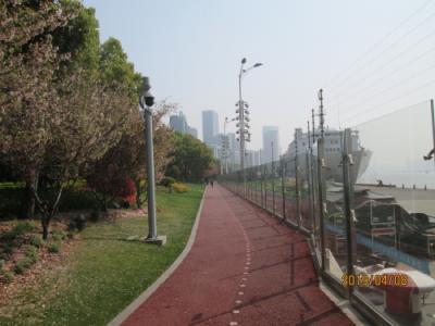 上海の北外灘濱江緑地・2019年春