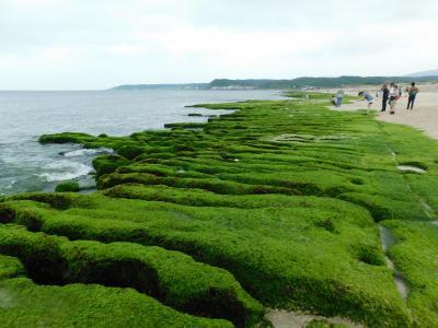 春限定奇妙な緑絨毯の老梅緑石槽・台湾最北端の富貴角燈塔・862バス皇冠北海岸ライン