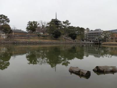 町家の面影を今に伝える、奈良町の旅