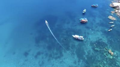 タオ島の事件を考える