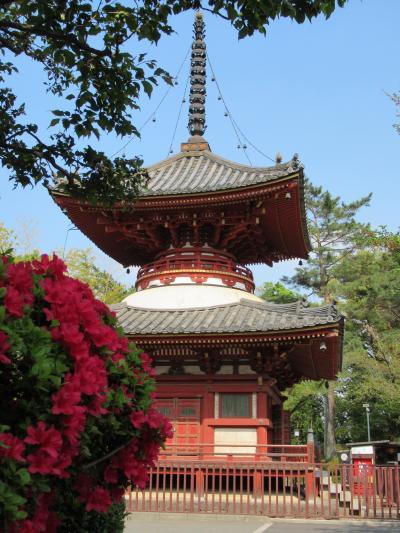 川越大師「喜多院」の江戸城遺構と五百羅漢