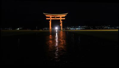 厳島神社、夜の部、海外の人たちとシカたちと。