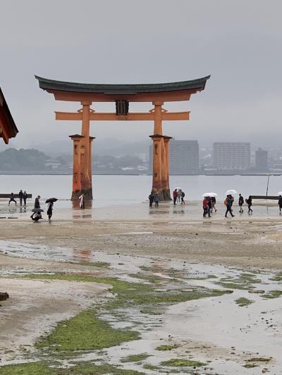 大鳥居大修復前のラストチャンス!広島~宮島~お好み村でかんぱ~いNo.①