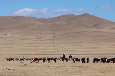 冬のモンゴル・シベリアへの旅3 テレルジで極寒の冬のゲル ホームステイ (Freezing Ger homestay in Terelj)