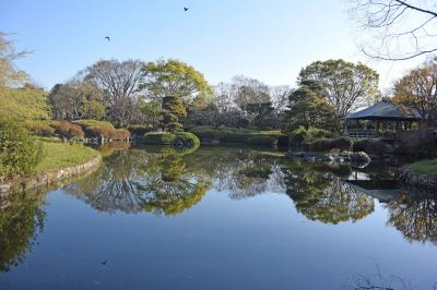 散歩・静岡市城北公園・静岡浅間神社・駿府公園付近 2019.04.03