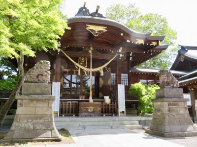 封じの宮 行田八幡神社へ病気平癒のお願いに。