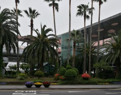 ホテルに泊まるだけの済州島訪問