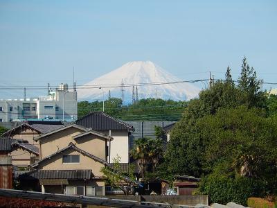 4月28日に素晴らしい富士山が見られました