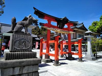 東松山「箭弓稲荷神社」の牡丹園