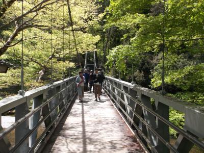 新緑の御嶽渓谷遊歩道を歩く