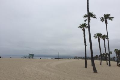 サンタモニカからベニスビーチへ散歩