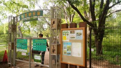 都立野川公園 自然観察園を中心に