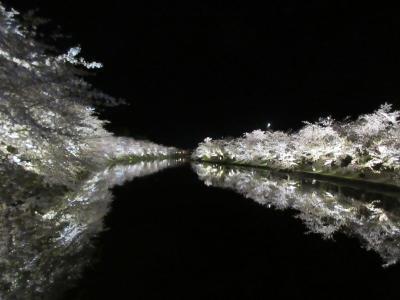 2019GW 東北・北海道旅行記 3.弘前城(夜桜)