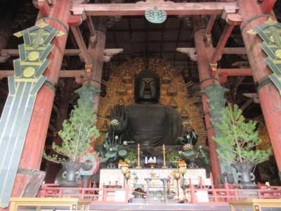 奈良の大仏、春日大社、奈良市内を周遊。