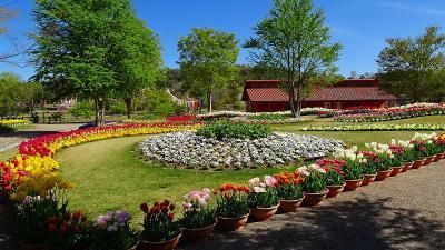 加西フラワーセンター(01) 園内風景と咲く花 その1。
