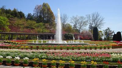 加西フラワーセンター(03) 園内風景と咲く花 その3。