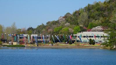 加西フラワーセンター(05) 園内風景と咲く花 その5。