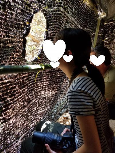 父娘2回目の2人旅 タイ中部ケンガチャン国立公園でヤイロチョウ探しとホアヒン観光 2日目