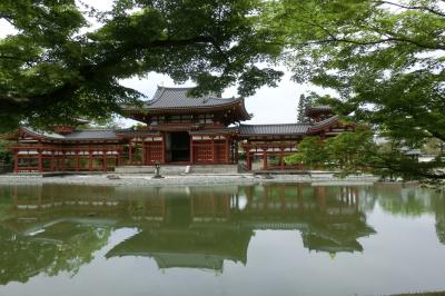 新緑の京都に行こう
