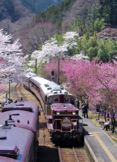 作成中!2019年4月「わたらせ渓谷鐵道」花桃の饗宴のような神戸駅にて