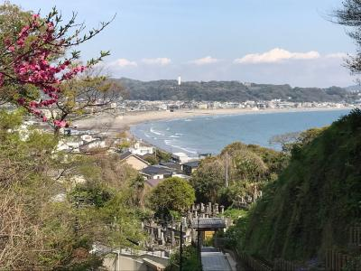 鎌倉33観音霊場巡り   〈 5 〉