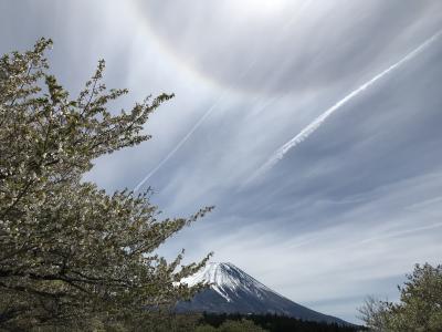 今年初で平成最後に、日本一のパワースポットへ