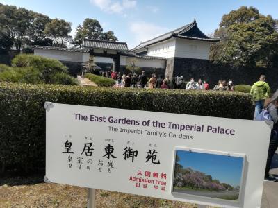 インターコンチネンタル東京のスイートにウィークエンド無料宿泊券で泊まる最終日と皇居めぐり。