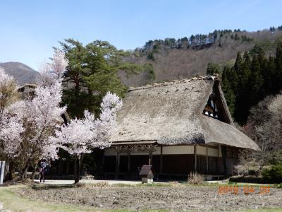 和倉温泉加賀屋から春の白川郷へ
