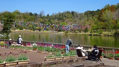 加西フラワーセンター(06) 園内風景と咲く花 その6。