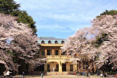 目黒・渋谷桜巡り:目黒川、西郷山公園、鍋島松濤公園、東大駒場キャンパス、駒場公園、旧前田家本邸、天空庭園など2019年4月