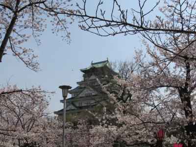 大阪城西の丸庭園の桜を眺める