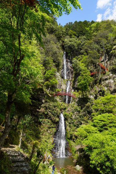 宮本武蔵が滝に打たれて修行をしたと言い伝えが残る五宝滝へ