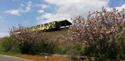 電車の写真が撮りたい(鹿島臨海鉄道)