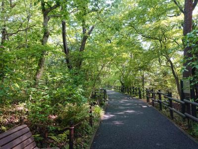 5月2日 横浜市環境支援センターとこども植物園