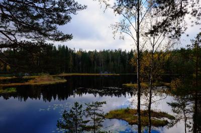初めてのフィンランド夫婦旅行 秋