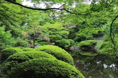 フォトジェニック東京② 東京都庭園美術館を訪ねて
