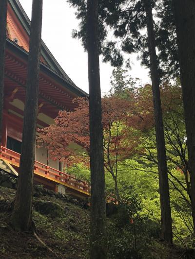 2019年5月 巡拝チケットで比叡山を乗り鉄一人旅