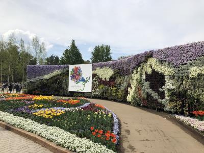信州花フェスタ2019に、車椅子の両親と。花が、サボテンが最高にキレイ!